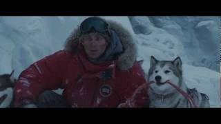 ����� ���� ~ �������������� ����� (Eight Below) ������������������� ��� ������ ��������